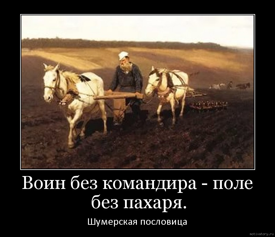Воин без командира - поле без пахаря.