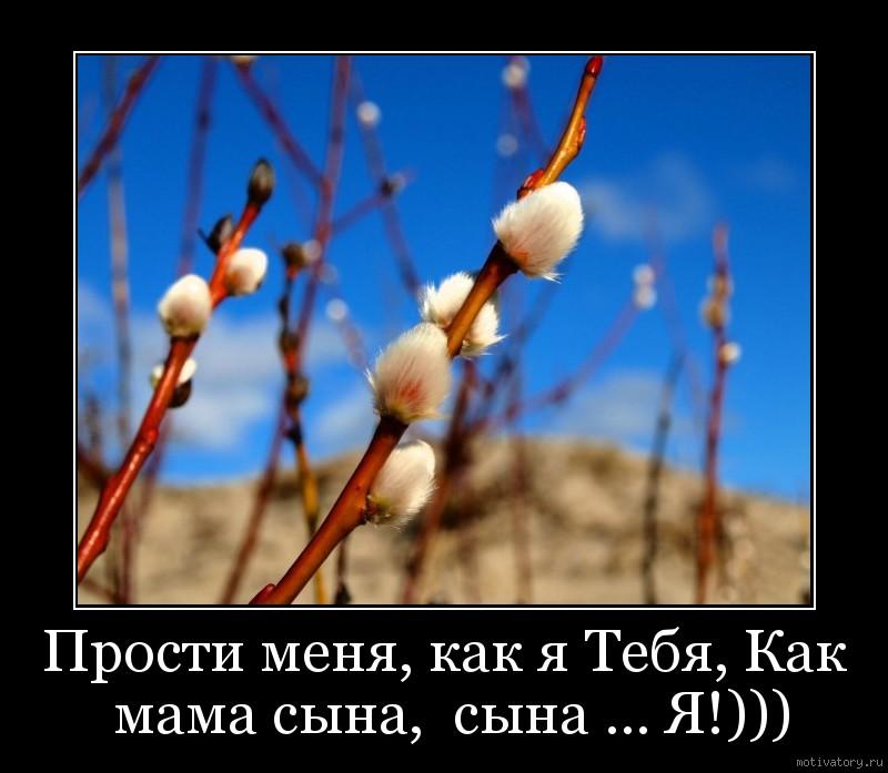 Прости меня, как я Тебя, Как мама сына,  сына ... Я!)))