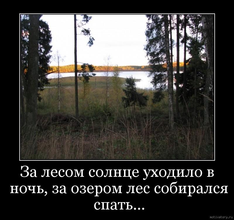 За лесом солнце уходило в ночь, за озером лес собирался спать...
