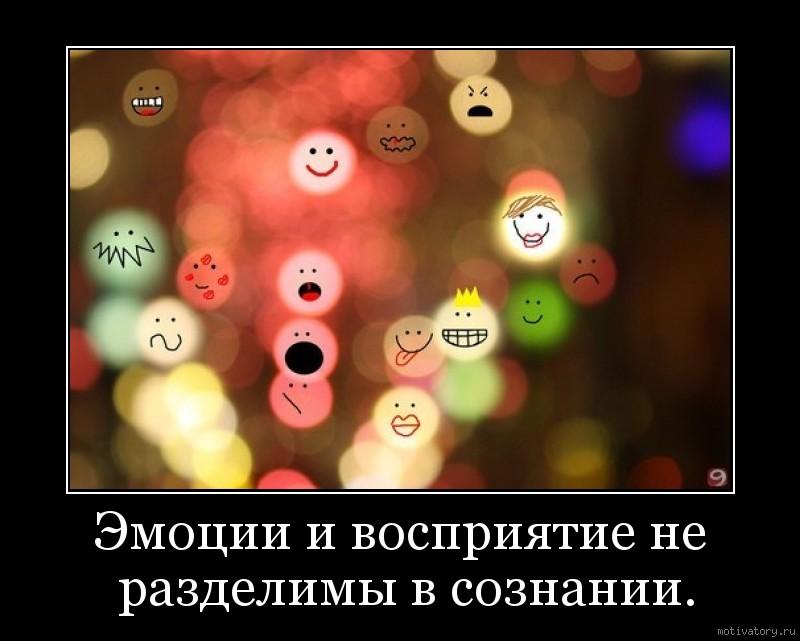 Эмоции и восприятие не разделимы в сознании.