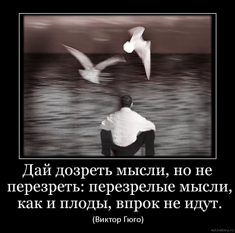 Дай дозреть мысли, но не перезреть: перезрелые мысли, как и плоды, впрок не идут.