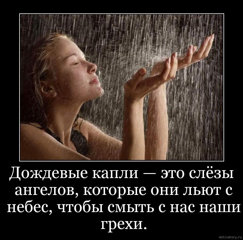 Дождевые капли — это слёзы ангелов, которые они льют с небес, чтобы смыть с нас наши грехи.