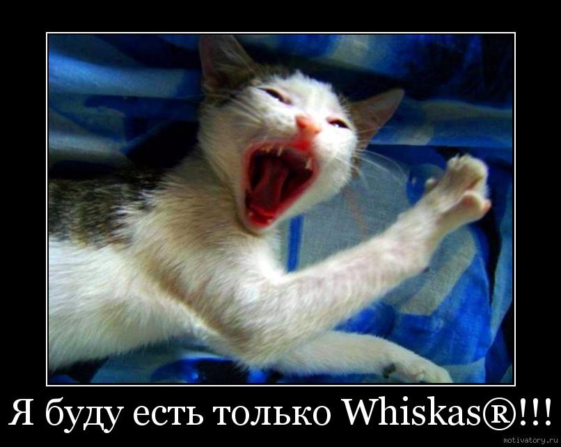Я буду есть только Whiskas®!!!