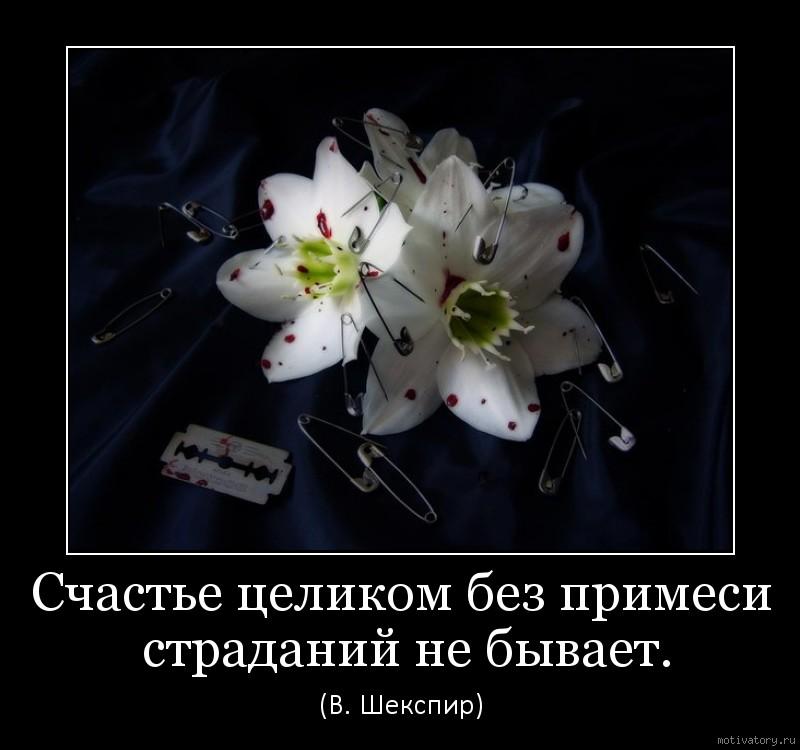 Счастье целиком без примеси страданий не бывает.