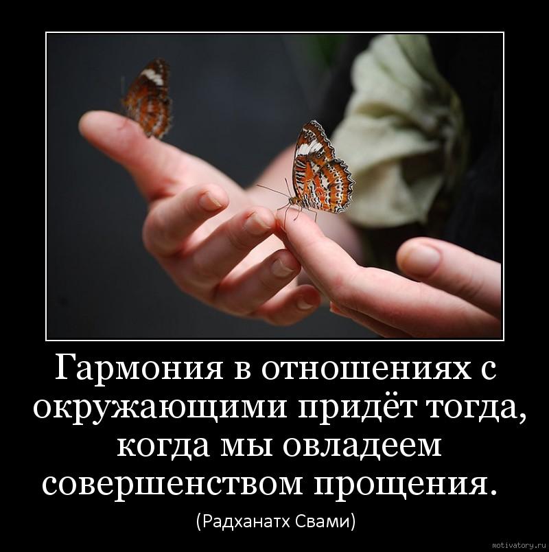 Гармония в отношениях с окружающими придёт тогда, когда мы овладеем совершенством прощения.