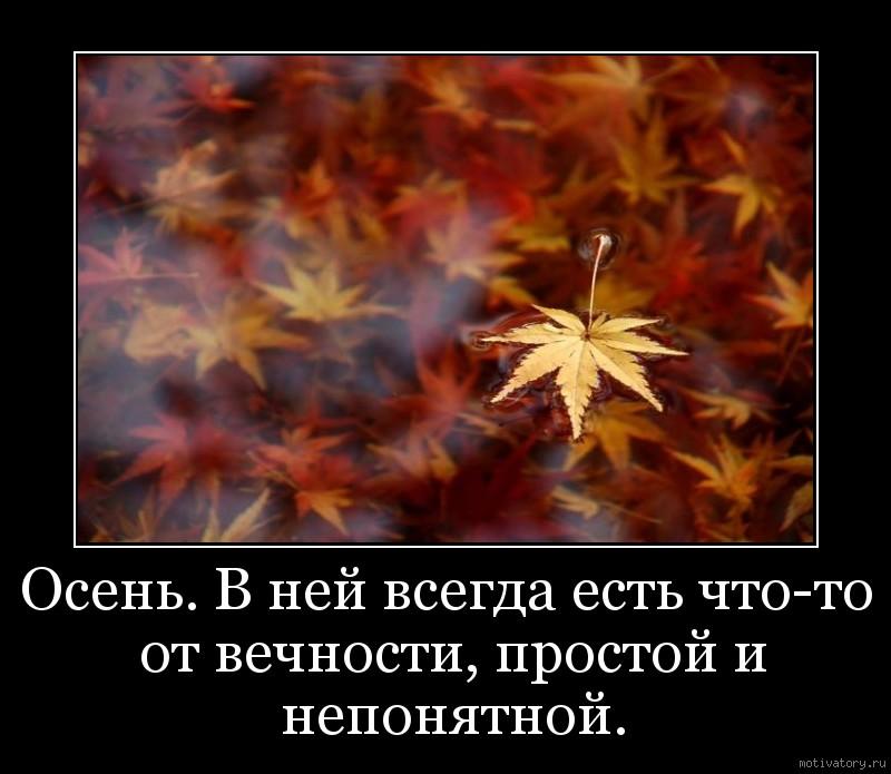 Осень. В ней всегда есть что-то от вечности, простой и непонятной.