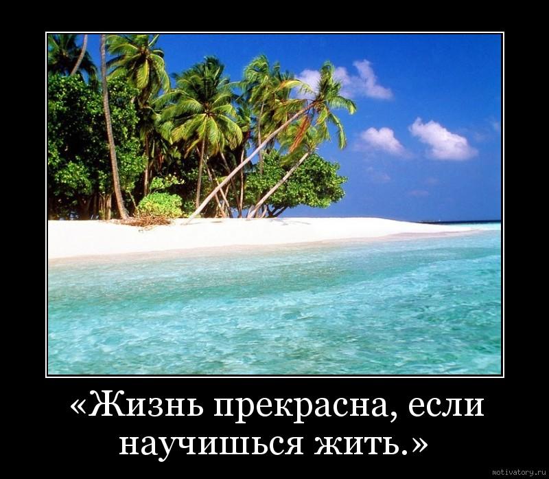 «Жизнь прекрасна, если научишься жить.»