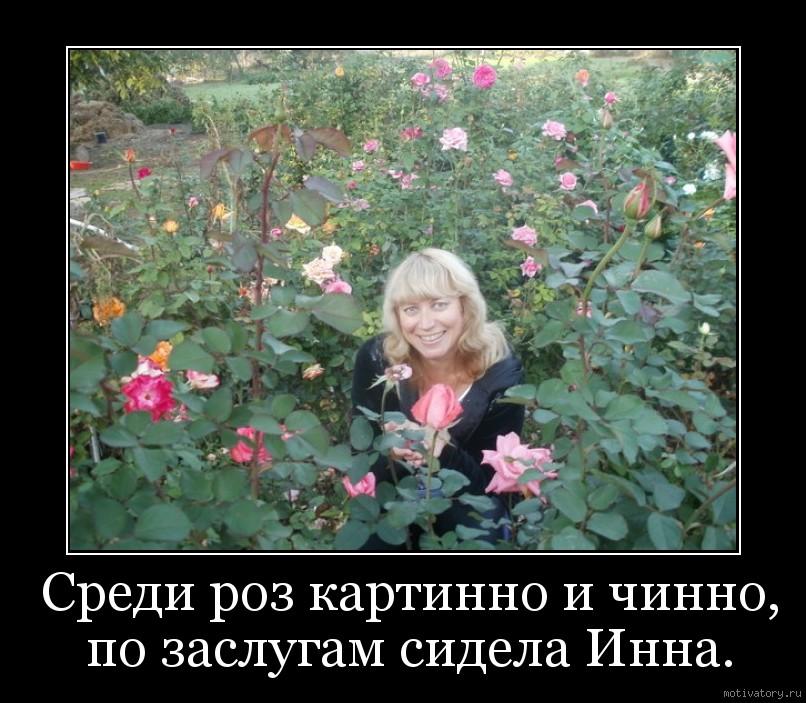Среди роз картинно и чинно, по заслугам сидела Инна.