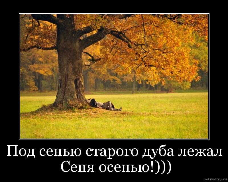Под сенью старого дуба лежал Сеня осенью!)))
