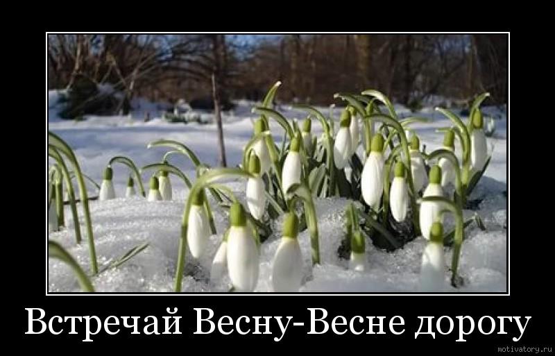 Встречай Весну-Весне дорогу