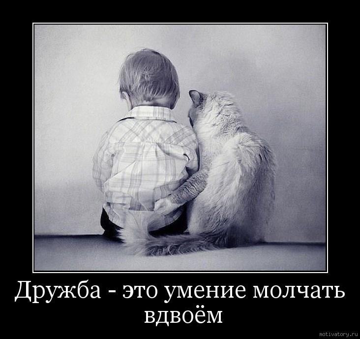 Дружба - это умение молчать вдвоём