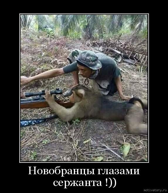 Новобранцы глазами сержанта !))