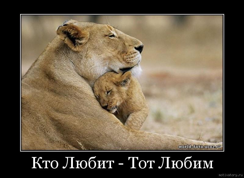 Кто Любит - Тот Любим