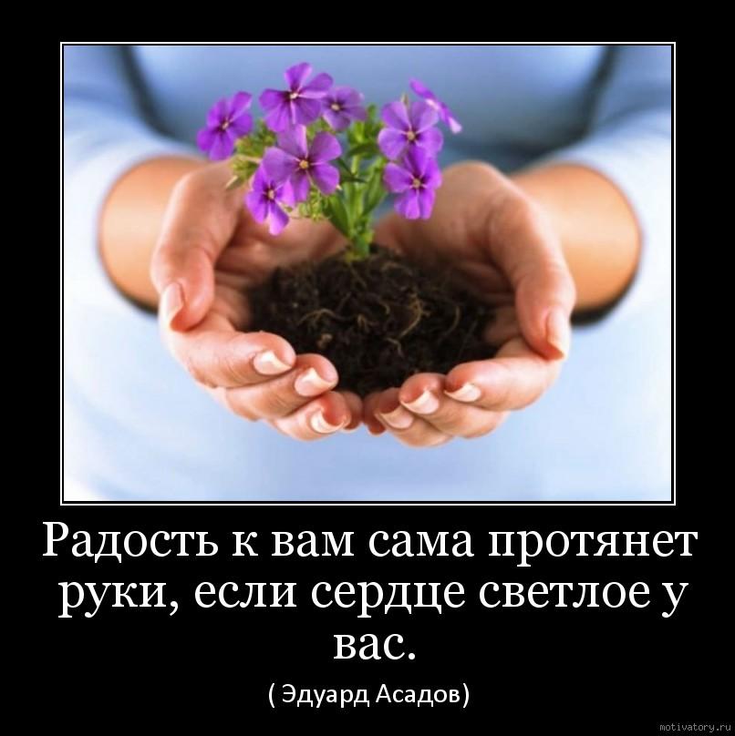 Радость к вам сама протянет руки, если сердце светлое у вас.