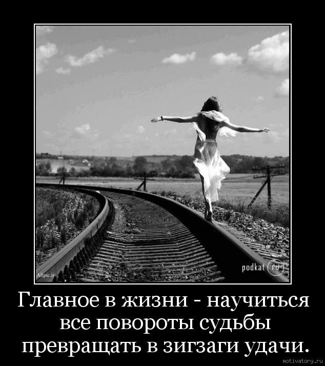 Главное в жизни - научиться все повороты судьбы превращать в зигзаги удачи.