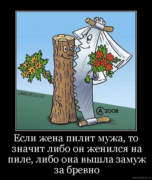 Если жена пилит мужа, то значит либо он женился на пиле, либо она вышла замуж за бревно