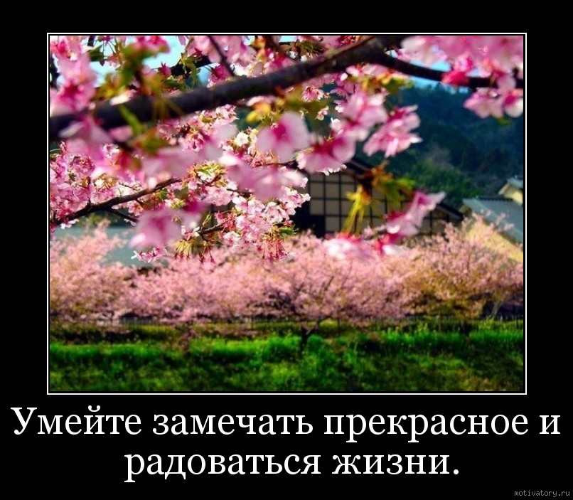 Умейте замечать прекрасное и радоваться жизни.