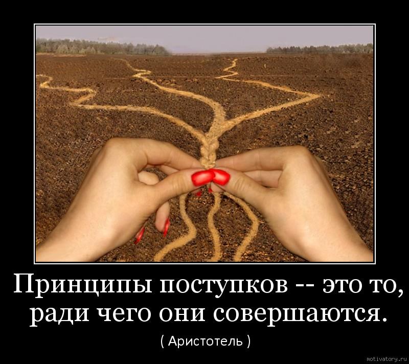 Принципы поступков -- это то, ради чего они совершаются.
