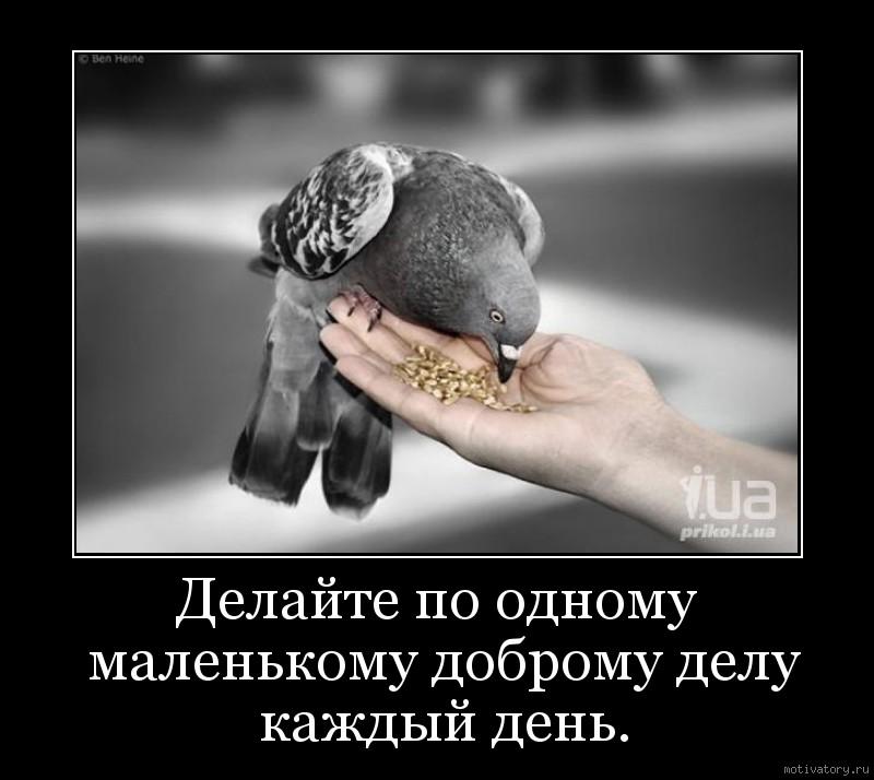 http://motivatory.ru/img/poster/4d822b6541.jpg
