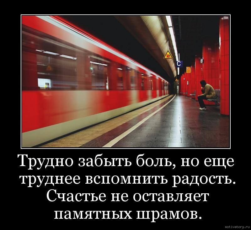 Трудно забыть боль, но еще труднее вспомнить радость. Счастье не оставляет памятных шрамов.