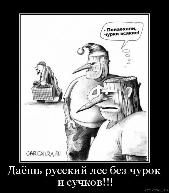 Даёшь русский лес без чурок и сучков!!!