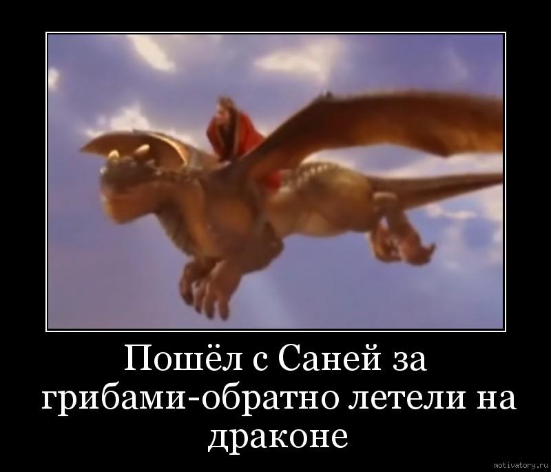 Пошёл с Саней за грибами-обратно летели на драконе