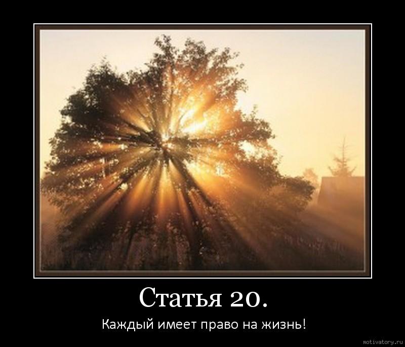 Статья 20.