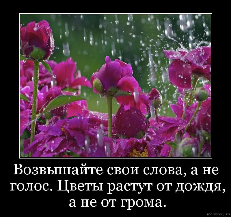 Возвышайте свои слова, а не голос. Цветы растут от дождя, а не от громa.