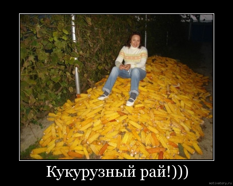 Кукурузный рай!)))