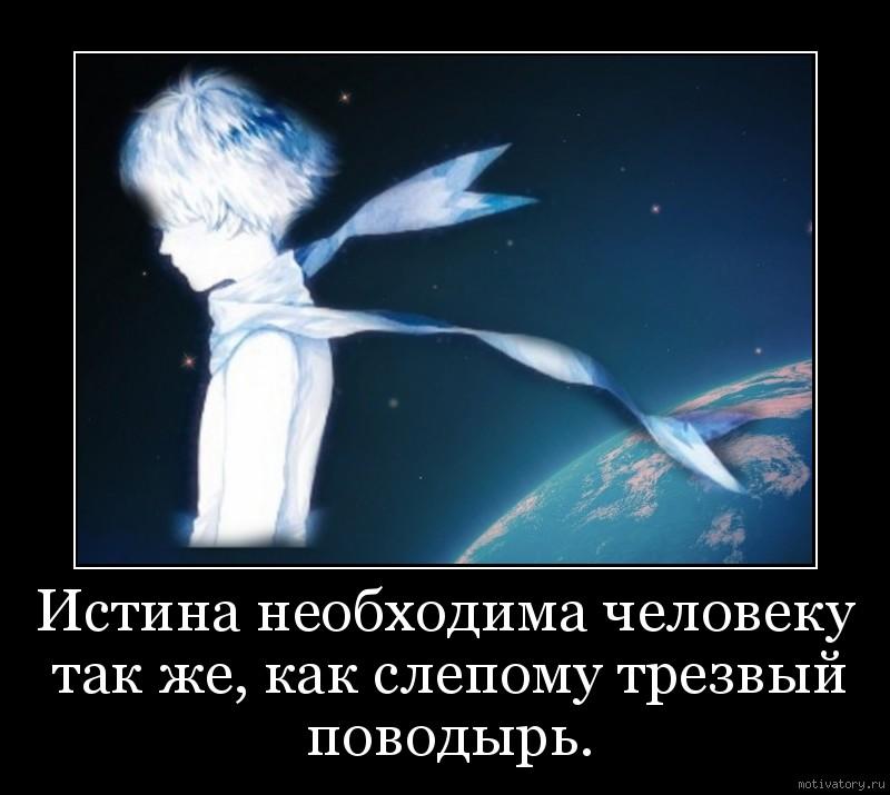 Истина необходима человеку так же, как слепому трезвый поводырь.