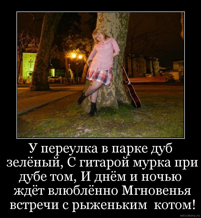 У переулка в парке дуб зелёный, С гитарой мурка при дубе том, И днём и ночью  ждёт влюблённо Мгновенья встречи с рыженьким  котом!