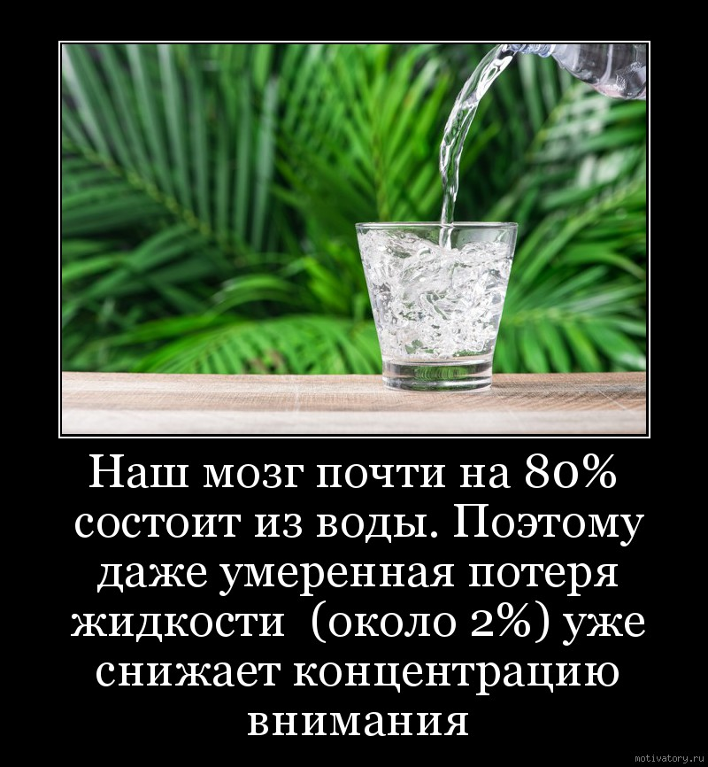 Наш мозг почти на 80% состоит из воды. Поэтому даже умеренная потеря жидкости  (около 2%) уже снижает концентрацию внимания