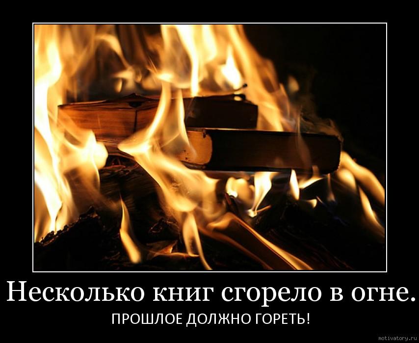 Несколько книг сгорело в огне.