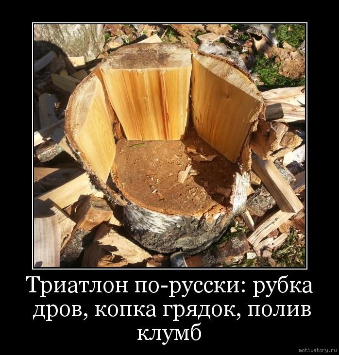 Демотиватор за дровами