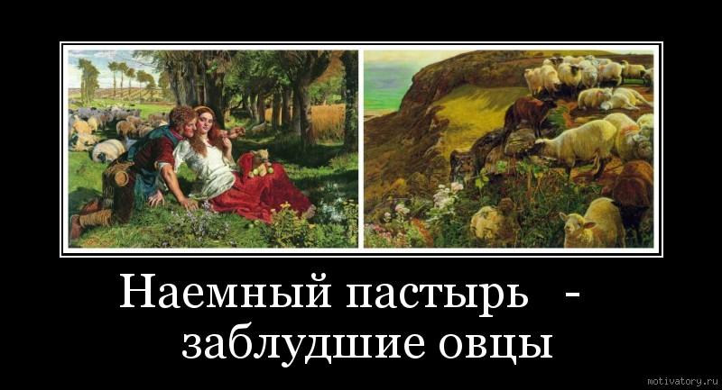 Наемный пастырь   -   заблудшие овцы