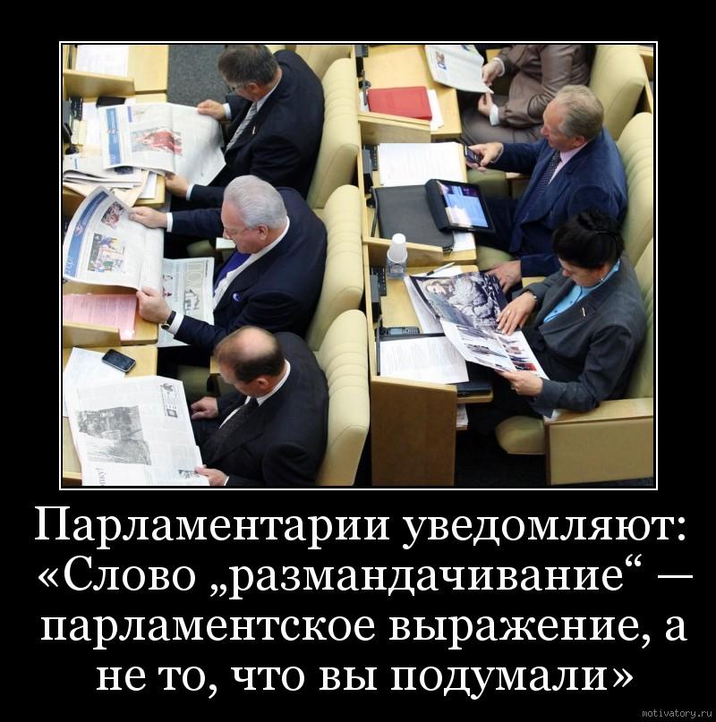 """Парламентарии уведомляют: «Слово """"размандачивание"""" — парламентское выражение, а не то, что вы подумали»"""