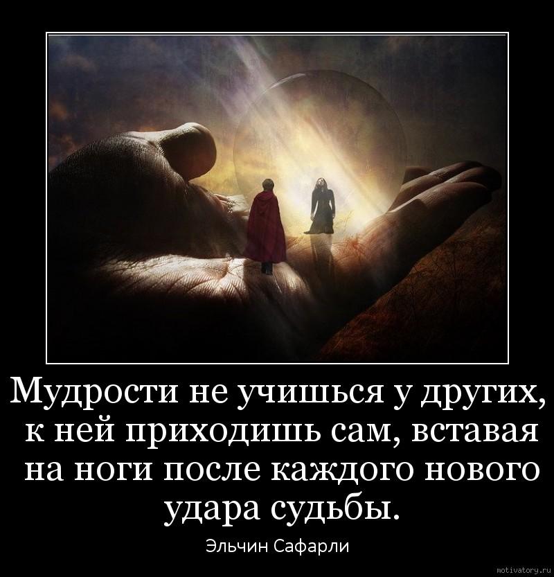 Мудрости не учишься у других, к ней приходишь сам, вставая на ноги после каждого нового удара судьбы.