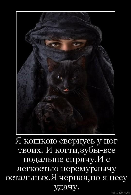 Я кошкою свернусь у ног твоих. И когти,зубы-все подальше спрячу.И с легкостью перемурлычу остальных.Я черная,но я несу удачу.
