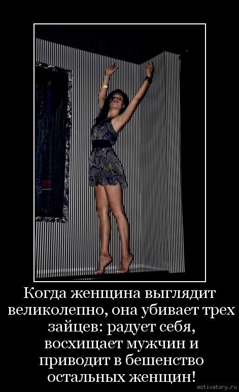 Когда женщина выглядит великолепно, она убивает трех зайцев: радует себя, восхищает мужчин и приводит в бешенство остальных женщин!