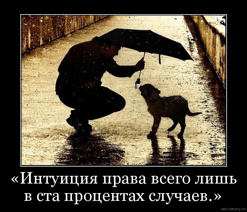 «Интуиция права всего лишь в ста процентах случаев.»
