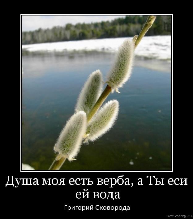 Душа моя есть верба, а Ты еси ей вода