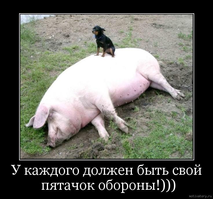 У каждого должен быть свой пятачок обороны!)))