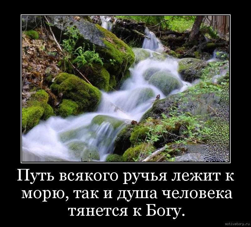 Путь всякого ручья лежит к морю, так и душа человека тянется к Богу.