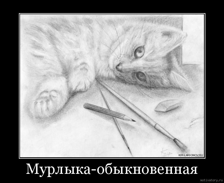 Мурлыка-обыкновенная