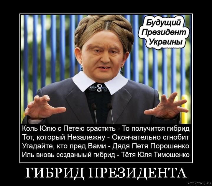 ГИБРИД ПРЕЗИДЕНТА