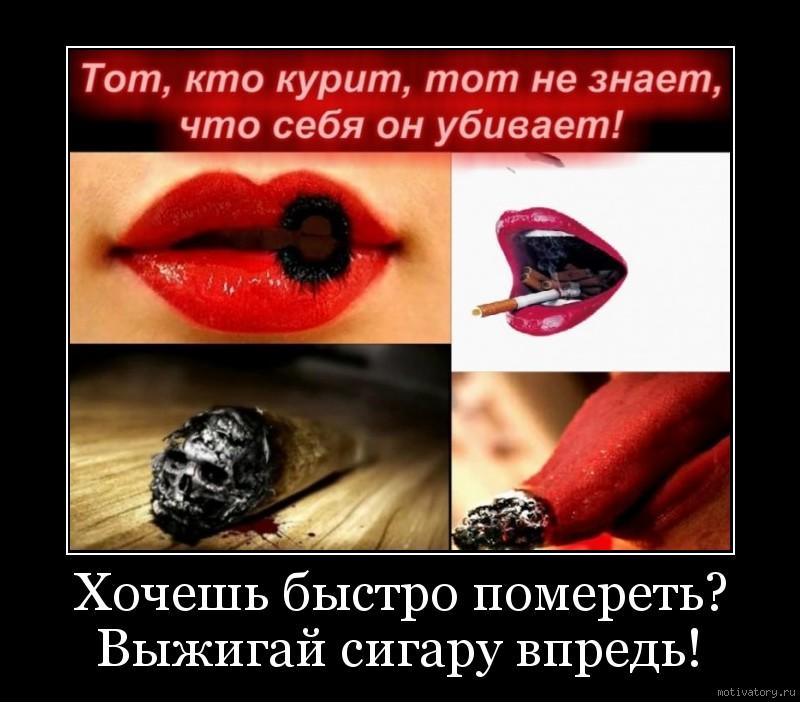 Хочешь быстро помереть? Выжигай сигару впредь!