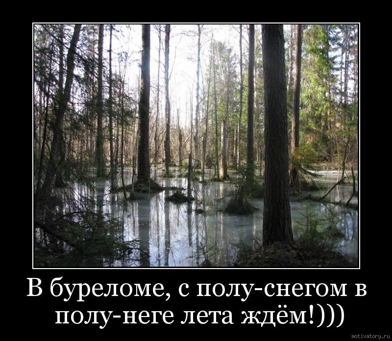 В буреломе, с полу-снегом в полу-неге лета ждём!)))