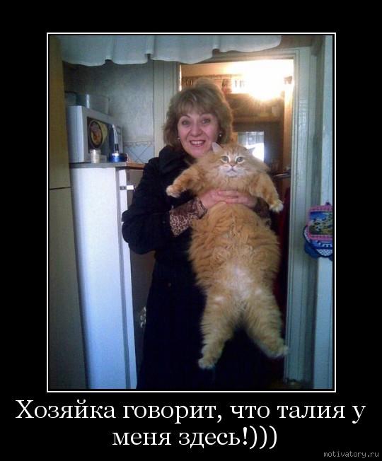 Хозяйка говорит, что талия у меня здесь!)))