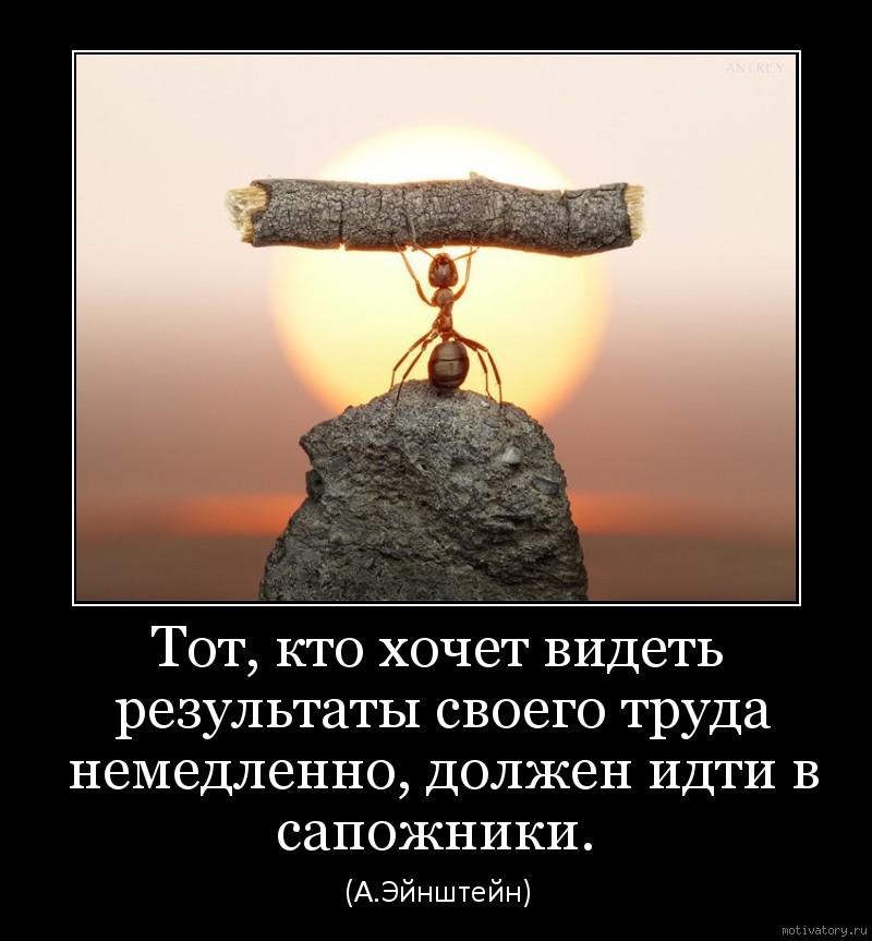 Тот, кто хочет видеть результаты своего труда немедленно, должен идти в сапожники.