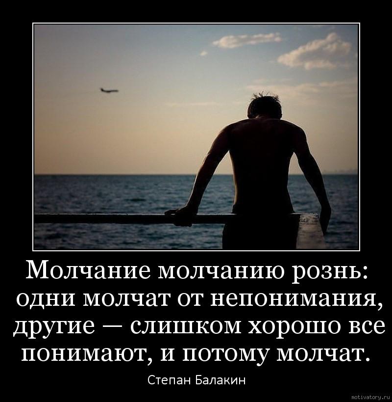 Молчание молчанию рознь: одни молчат от непонимания, другие — слишком хорошо все понимают, и потому молчат.